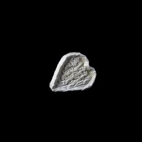 Coeur d'Alvignac